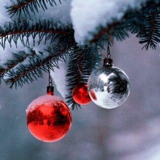 Рождественская ёлка 9 января 2008 г.